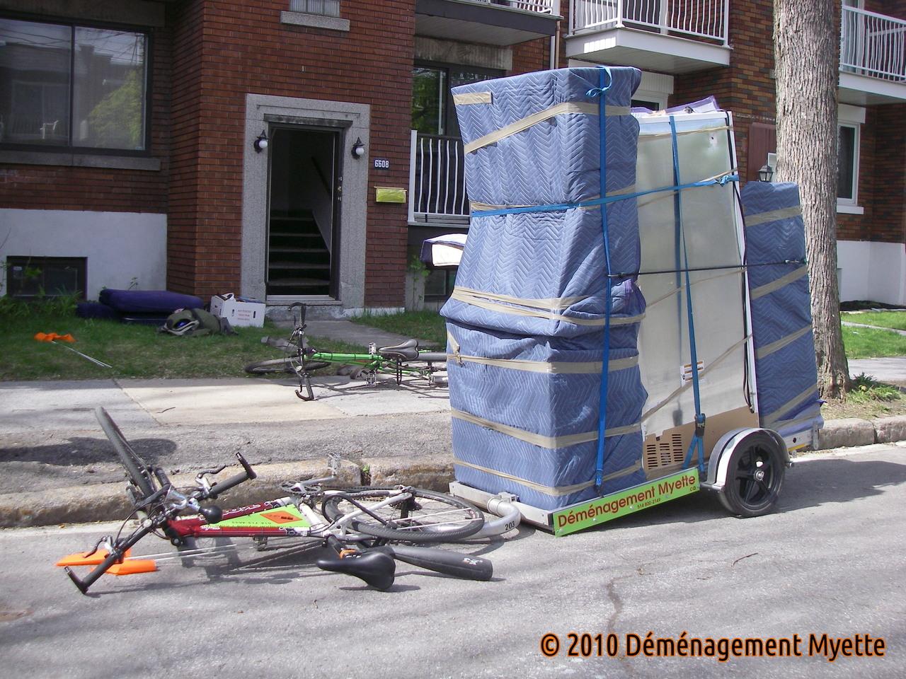 demenagement frigo. Black Bedroom Furniture Sets. Home Design Ideas